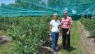 Kathy and Steve Kuflewski of Once in a Blue Moon Farm in Waynesville, OH, stand inside their netted blueberry field. (Photo credit: Gary Gao)
