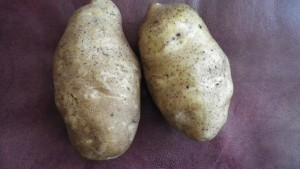 The Importance Of Consistency And Predictability In Potato Varieties