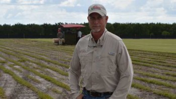 Jonathan Brown of Bethel Farms standing in a field of sod in Arcadia, FL