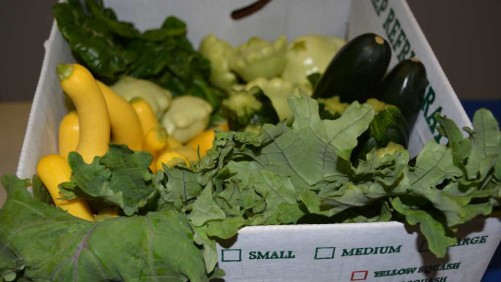 Grow With Demand For Local Produce [Opinion]