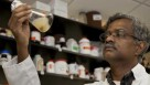 Professor Balasubramanian Rathinasabapathi inspecting chemicals in his UF/IFAS lab.