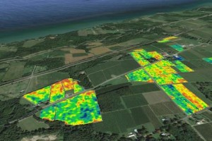 Concord vineyards along the shore of Lake Erie overlaid with spatial sensor canopy data. In this case, blue areas show vines with strong growth and high production and red areas show problem areas of poor growth and production. In conjunction with other spatial data layers, such as soil and yield maps, vineyard managers can develop variable rate management plans for their vineyards to reduce variation and improve production and fruit quality.