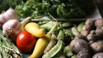 Clagett Farm CSA free image feature