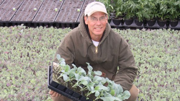 David Coveyou of Coveyou Farms in Petoskey,  MI, produces certified organic vegetables  including lettuce and other leafy greens,  tomatoes, cucumbers, squash, and sweet corn. Photo credit: Coveyou Farms