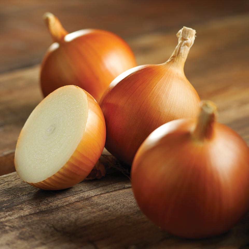 Onion Centurion: variety description, cultivation features and reviews 17
