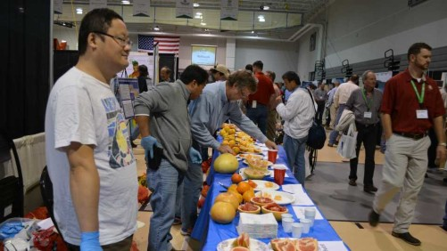 Open Forum To Help Put More Florida Citrus On The Fast Track