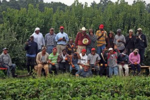 The workers at Hollabaugh Bros., Inc. Fruit Farms & Market in Biglerville, PA take a well-deserved break. (Photo credit: Bruce Hollabaugh)