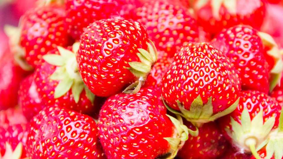 a group of ripe strawberries