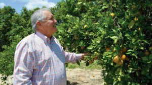2016 Citrus Achievement Award Winner Has High Hopes For A Crop Comeback