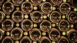 Border Protection Intercepts New Leafhopper In Wine Shipment