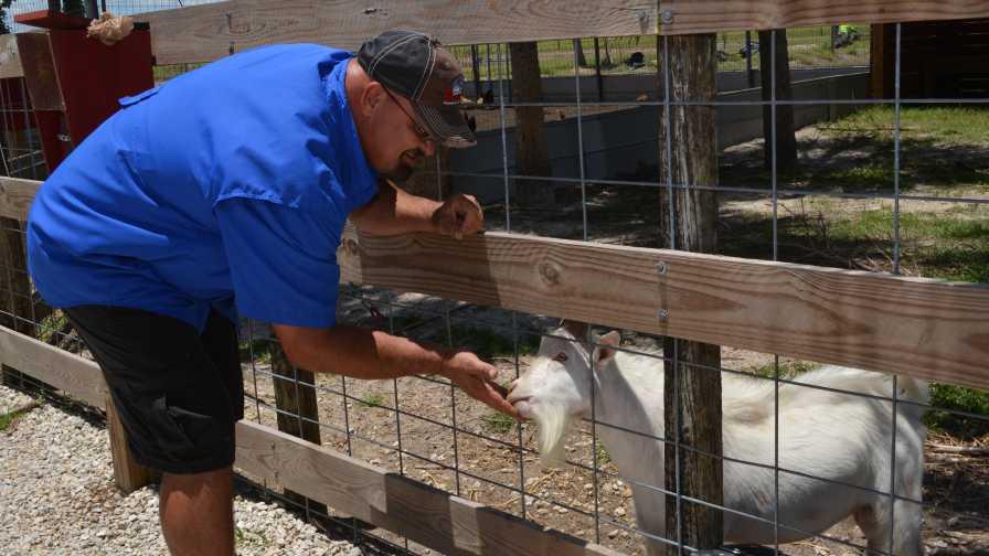 Mike Greenwell feeding a goat on his farm