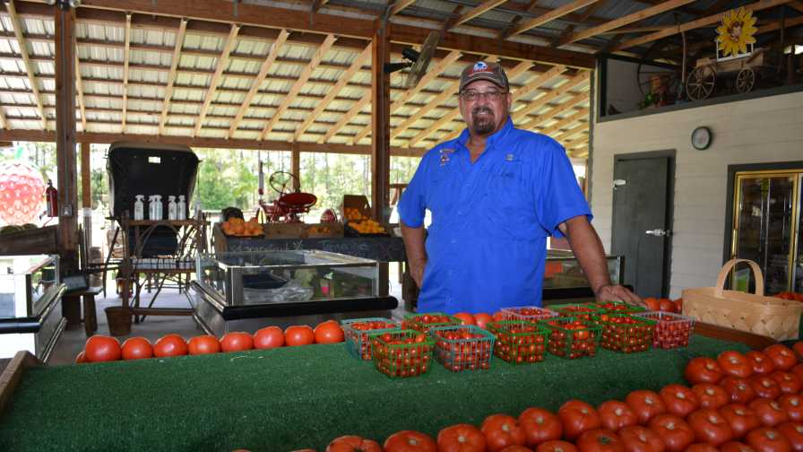 Mike Greenwell of 31 Produce
