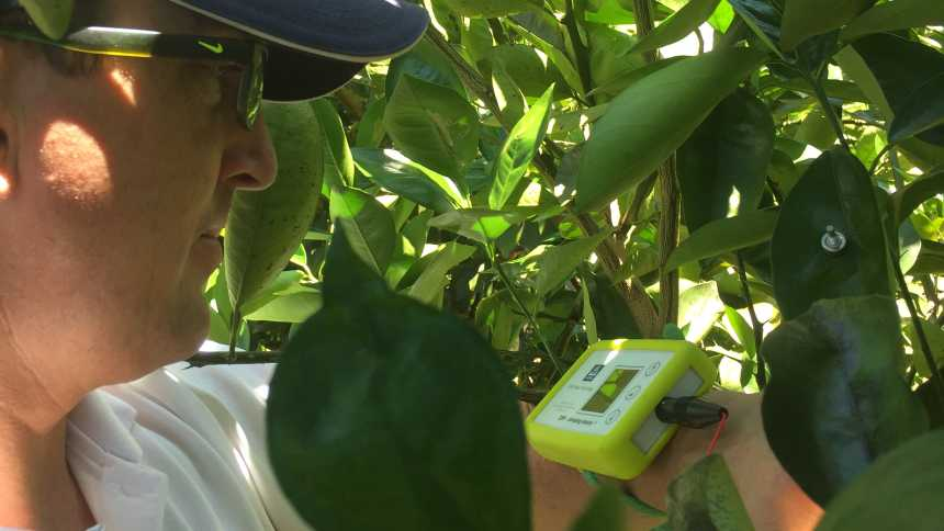 Yara Water Solution system installation in a Florida citrus grove