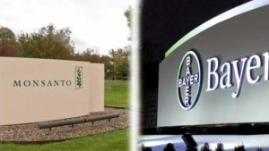 Bayer to Sell Its Vegetable Seed Business