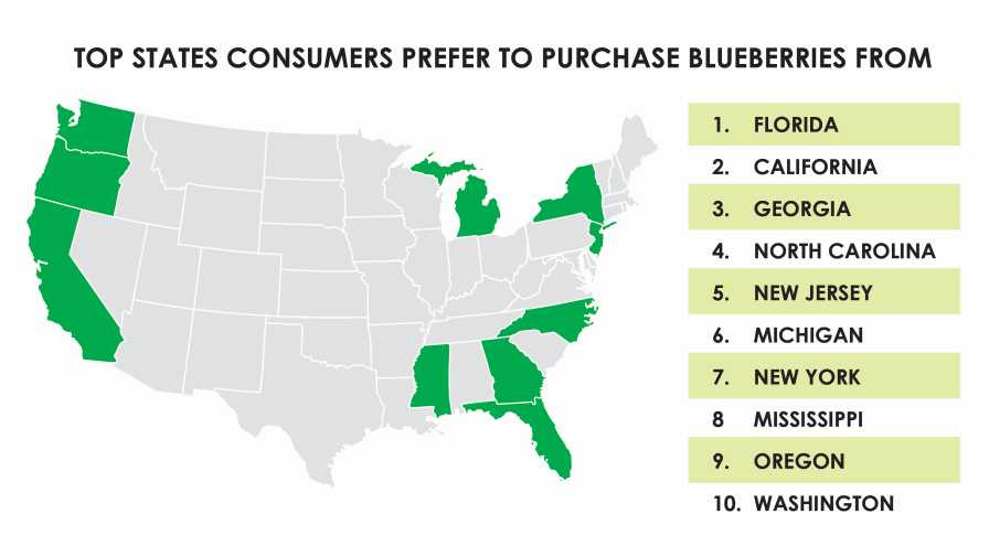 Graphic illustrating top states consumers prefer to purchase blueberries from