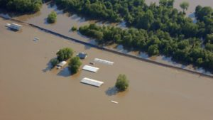 What Next? What To Do After A Natural Disaster At Your Farm
