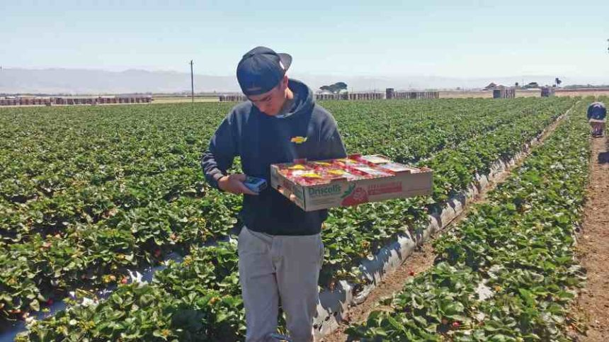 Ways Young Farmers are Gearing up to Grow Faster