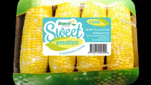 Branch Farms Debuts 'Sweet Emotion' Sweet Corn
