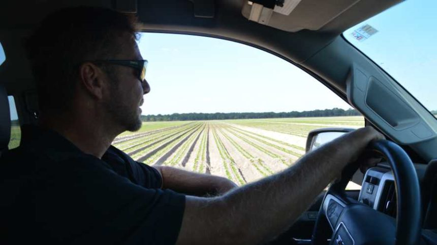 What Market Forces Are Driving Your Agribusiness?