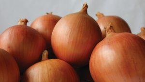 14 Top-Notch Onion Varieties