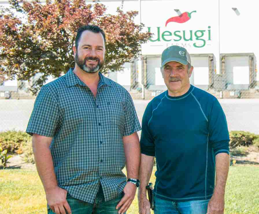 Pete and Joe Aiello photo from Uesugi Farms