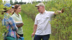 Pollination Experts Host Webinar Series