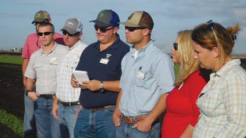 What to Ask When Seeking Your First Job in Agriculture