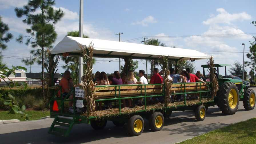 Bedner's Farm Fresh Market tram hay ride