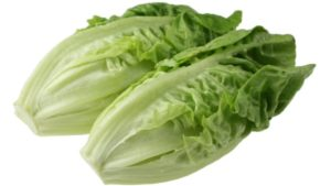 No Need for Hysteria Over Reports of Listeria in Romaine Lettuce