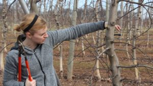 Learning Pruning, by Doing