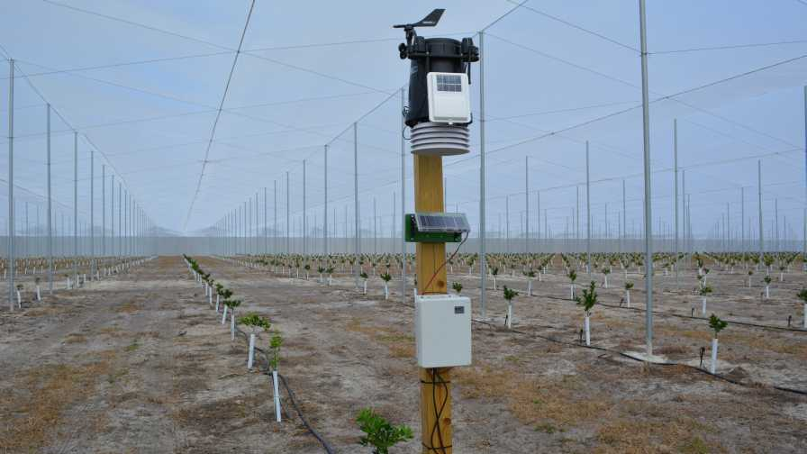 Weather station inside protected citrus planting