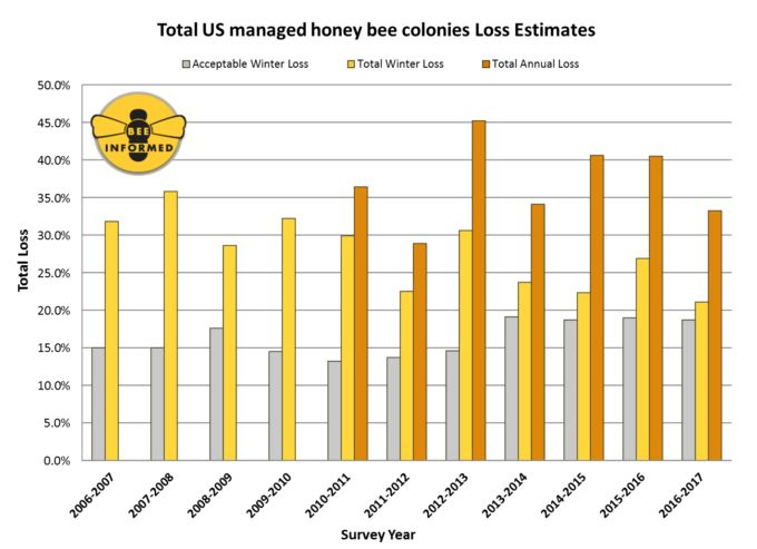 Survey: Bee Loss Drops Last Season