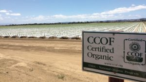 Fungicide for Specialty Crops Gets OMRI Label