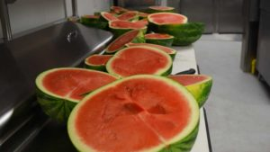 Scientists Keying in on Sweeter and Stronger Watermelon Varieties