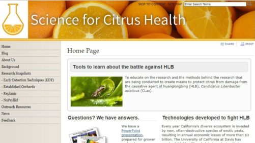 University of California Launches Website to Update Growers on Citrus Research