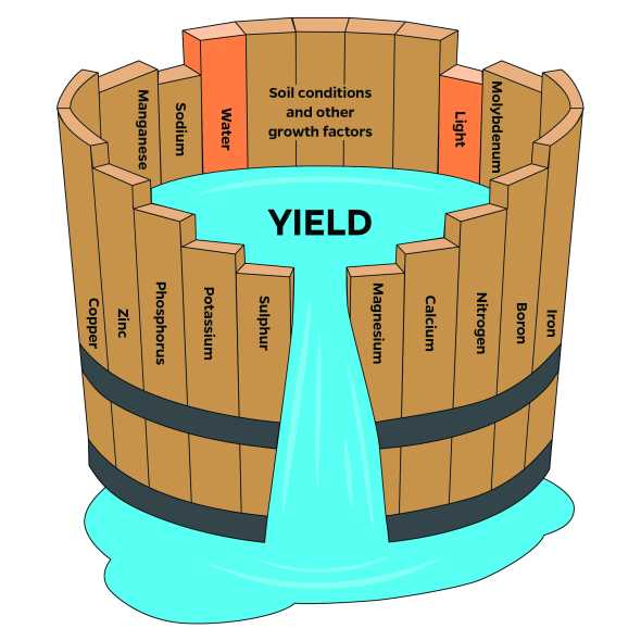 Water barrel graphic depicting Liebig's law of the minimum