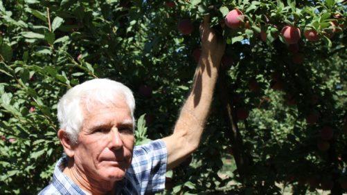 Winning at Farmers' Markets – Secrets of Success