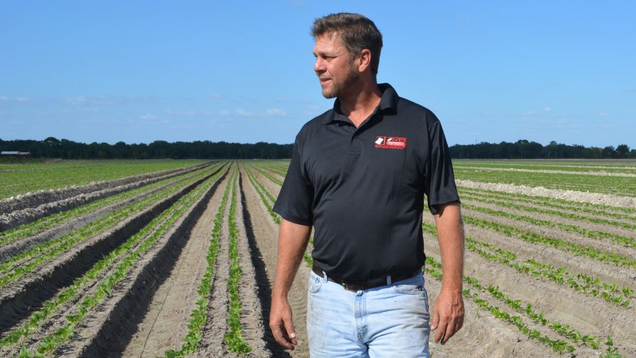Saving 1 Million Gallons of Water a Day: Sustainable Lessons From Jones Potato Farm