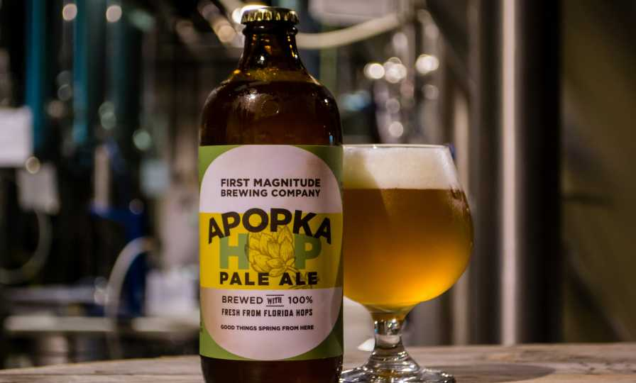 Glamour shot of Apopka Hop Pale Ale