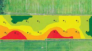 Ways Florida Growers Are Mapping out Solutions With Technology