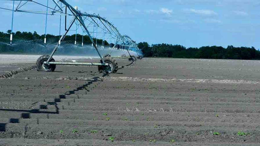 Money Flow on Tap for Water-Conscious Florida Farmers