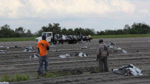 8 Pointers to Prepare Your Farm for Hurricane Season