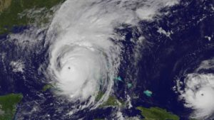 Florida Agriculture Hoping for Federal Disaster Relief