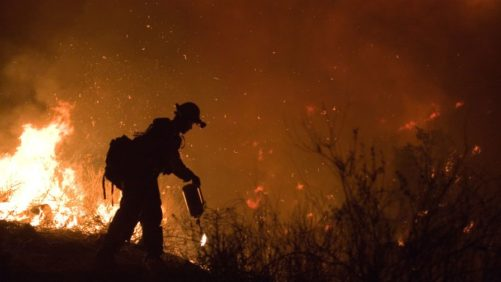 California Wine Industry Seeks Disaster Assistance from Wildfires