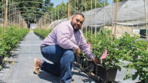 Grower Sees Challenges, Opportunities in Booming Organic Berry Market
