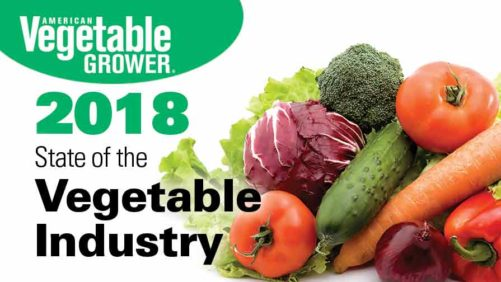 More Extreme Weather Yet Vegetable Production Is Up: Will Early State of the Industry Trends Hold?
