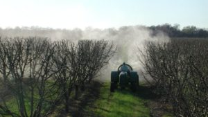 Restrictions Recommended on Chlorpyrifos in California