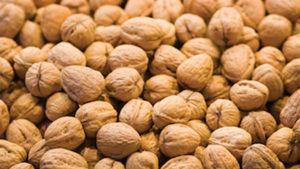Achieve Season-Long Tree Nut Protection