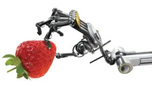Robot-holding-a-strawberry-FEATURE