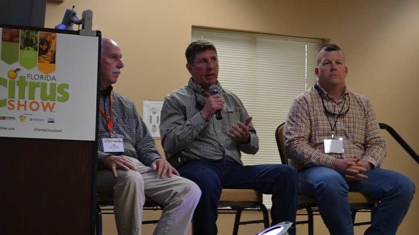 Florida Citrus Growers Not Backing Down from Destruction or Disease